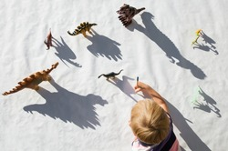 child draws with  pencil contrasting shadows from figures of toy dinosaurs on  light background. little scientist,  ideas for  development of creative thinking, interesting games for children
