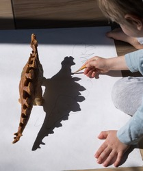 child draws with pencil contrasting shadows from toy dinosaur. drawing of preschooler, creative ideas for children's creativity. Interesting activities for children during period of self-isolation