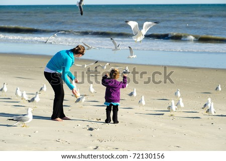 child feeding birds at the beach