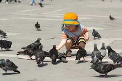 child feeding pigeons, baby feeding birds, baby on square Saint Marco, dressed in short sleeve with orange summer hat, Venice, Italy