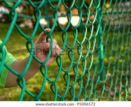 Child finger holding on to a chain link fence