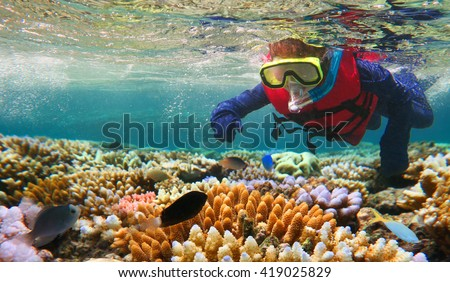 Photo of  Child (girl age 5-6) snorkeling and dive with life jacket vest and Lycra protection suit in the Great Barrier Reef in the tropical far north of Queensland, Australia. Real people. Copy space