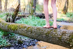 Child girl feet walking on tree trunk. Selective focus
