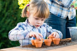 child girl planting flower seeds with mother. Gardening, planting concept - mother and daughter planting flower seeds into small pots. Bulbs flowering
