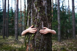 Child girl stand behind and give hug to tree in forest. Concept of global problem of carbon dioxide and global warming. Love of nature. Hands around the trunk of a tree.