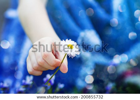 Child hand holding a flower, toned photo.