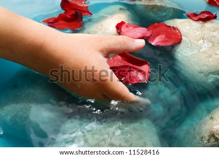 child hand, water, stones and red rose petals