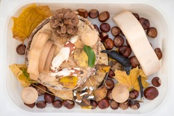 Child hands playing sensory box. baby sensory box autumn with toys and autumn leaves