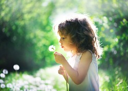 child has summer joy with dandelion
