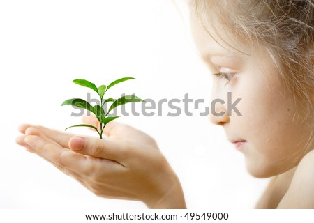 child holding a sprout at her hands on a white background