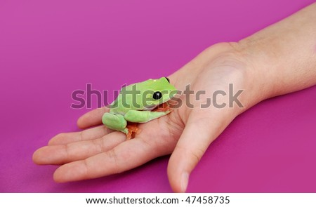 Child holding frog in her hand