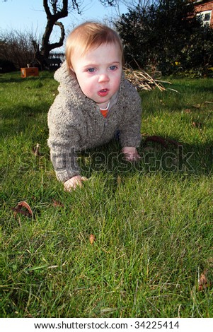 child in garden. baby or toddler explore lawn and nature