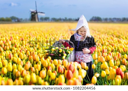 Child in tulip flower field with windmill in Holland. Little Dutch girl in traditional national costume, dress and hat, with flower basket. Kid in tulips fields in the Netherlands at wind mill.