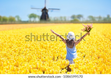 Child in tulip flower field with windmill in Holland. Little Dutch girl in white hat with bow picking flowers for bouquet. Kid in tulips fields in the Netherlands at wind mill. #1086599570