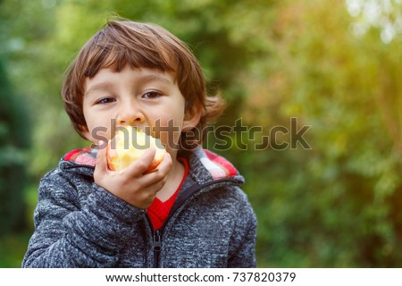 Child kid eating apple fruit outdoor autumn fall nature healthy outdoors