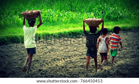child labour in indian farms