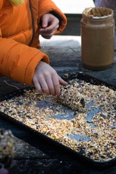 Child Making a Natural Bird feeder out of Peanut Butter and Birdseed