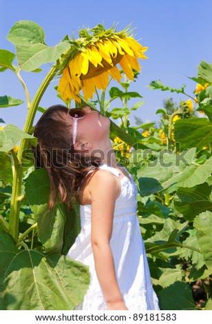 Child on field. Little girl looking at sunflower - stock photo
