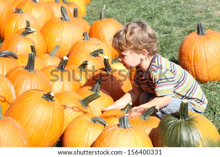 Child picking a pumpkin