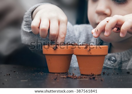Child planting seeds in pots #387561841