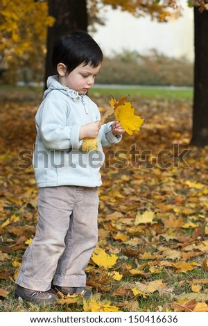 Child playing in a park with yellow autumn or fall leaves.