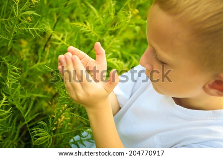 Child playing on green meadow examining field flowers. Environmental awareness education.