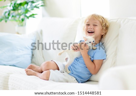 Child playing with baby cat. Kid holding white kitten. Little boy snuggling cute pet animal sitting on couch in sunny living room at home. Kids play with pets. Children and domestic animals. #1514448581