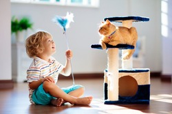 Child playing with cat at home. Kids and pets. Little boy feeding and petting cute ginger color cat. Cats tree and scratcher in living room interior.