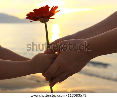 Child's delivering a flower daisy to an important person during a special moment