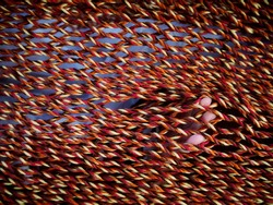Child's fingers pocking through the woven strings of a red and yellow hammock