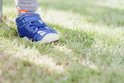 Child's foot resting on green grass, object closeup, little young kid riding balance bike, healthy active lifestyle abstract concept, Sport for kids. Soft focus. Copy Space.