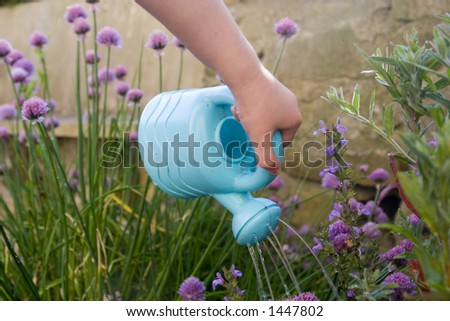 Child's hand with small plastic blue watering can.