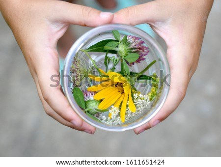 Child's hands holding a jar of freshly picked flowers