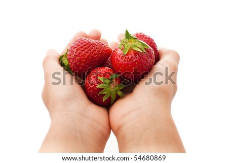 child's hands holding strawberries isolated on white