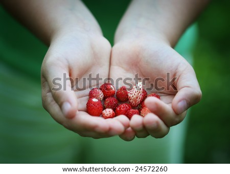 Child's hands with berries