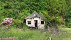 Child's playhouse. Abandoned and neglected. Seasonal.