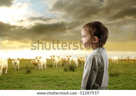 Child standing on a green meadow and looking at some animals