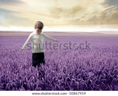 Child standing on a lavender meadow