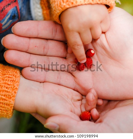 Child taking strawberry from father\'s hand