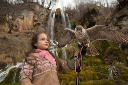 child with falcon child in nature girl with falcon falcon falco peregrinus hybrid falco