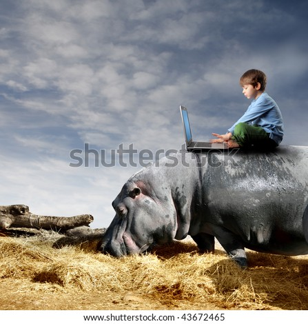 child with laptop on a hippo