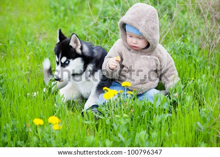 Child with puppy husky sitting on the grass