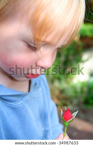 child with rose in garden. boy smell red flower in nature