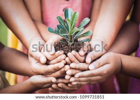 Children and parent holding young tree in hands for planting together with love and unity as save world concept