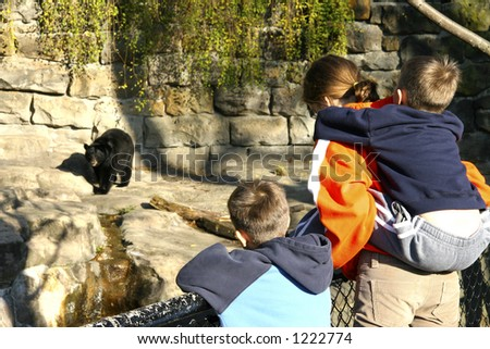 Children at the Zoo looking at a Bear - stock photo