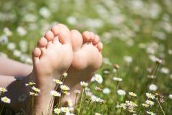 children foot camomile field background