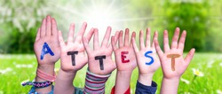 Children Hands Building Word Attest Means Attestation, Grass Meadow