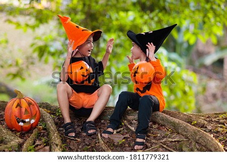 Children in black and orange witch costume and hat with pumpkin and spider in autumn park on Halloween. Asian kids trick or treat with candy bucket. Chinese boy dressed up. Brothers play. Photo stock ©
