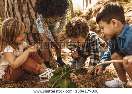 Children in forest looking at leaves as a researcher together with the magnifying glass. Foto stock ©