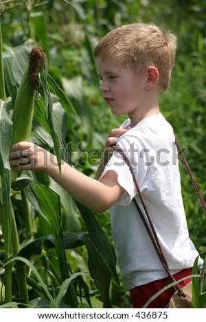 children of corn. Children In The Corn.